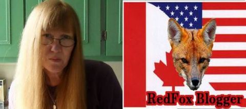 kel fritzi red fox blogger Capture